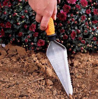 Testing Soil Drainage